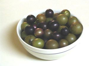 Muscadines.Scuppernongs (1)