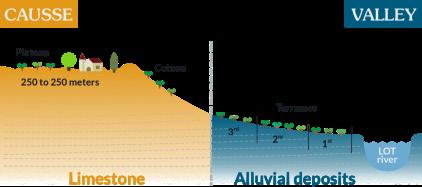 Terraces Cahors